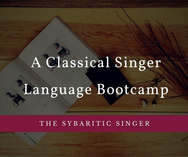 Revolutionize Your Studio: Language Bootcamp